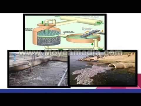 Que podemos hacer para recuperar y reutilizar el agua del for Como recuperar agua piscina verde