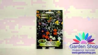 Цветочные семена японской смеси сад