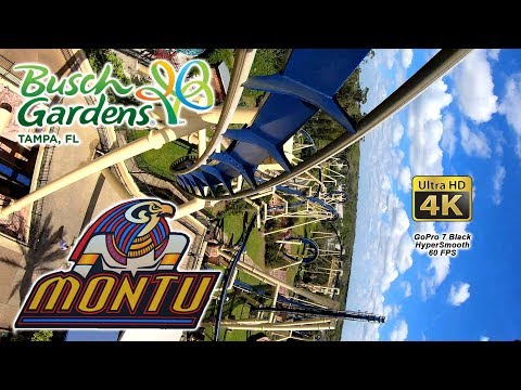 2019 Montu Roller Coaster Front and Back Seat 4K UltraHD On Ride POV Busch Gardens Tampa HyperSmooth