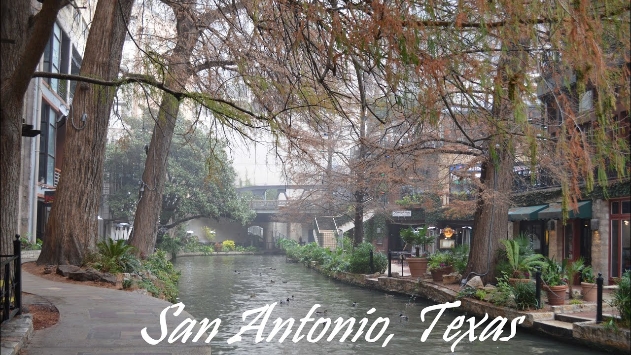 Best Hot Dogs In San Antonio Texas