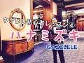 ウクレレ初心者レッスン④「ハナミズキ」をたった5つの簡単コードで!【コード付】