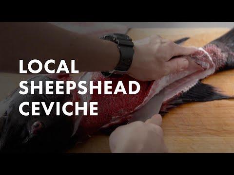 Homage Series:  ChefJuan Carlos & Promoting Local Fishermen