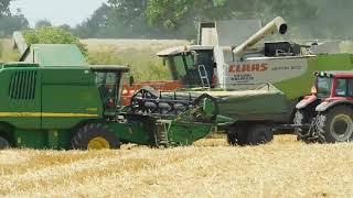 Żniwa 2019|Pszenica 8 ton z ha|Mega maszyny|Usługi Smykała dla Agroland 600 ha