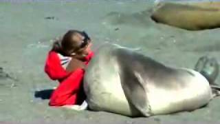 seal meets girl seal falls in love with girl the end