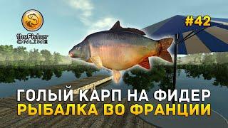 Голый Карп на фидер Рыбалка во Франции Fisher Online 42