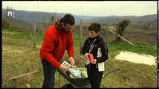 Na vrtu | TV Maribor 15.3.2014