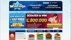 Wintingo Video Review