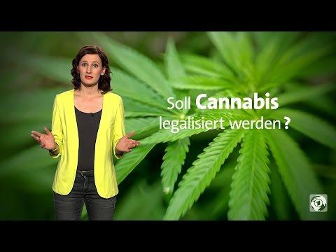 Sollte Cannabis in Deutschland legalisiert werden?