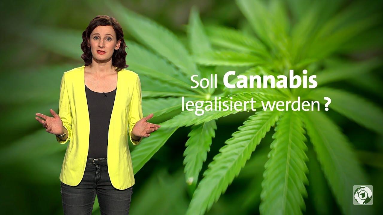 Wird Cannabis Legalisiert