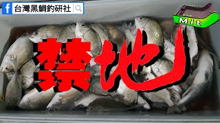 靈異傳說最多【曾文溪】魚也多/Taiwan Special Fishing Technolog/東石沙格季開跑_黑鯛、石斑、浮磯釣、沉底、金寶螺、雞肝釣法、雞腸釣法、泡棉船、筏釣、沙梭 thumbnail