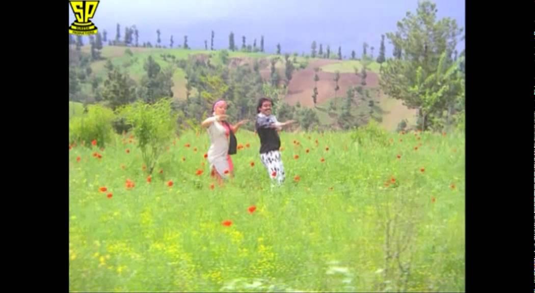 Brahma Putrudu (1988)
