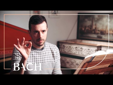 Corti On Harpsichord Concerto In A Major BWV 1055 | Netherlands Bach Society