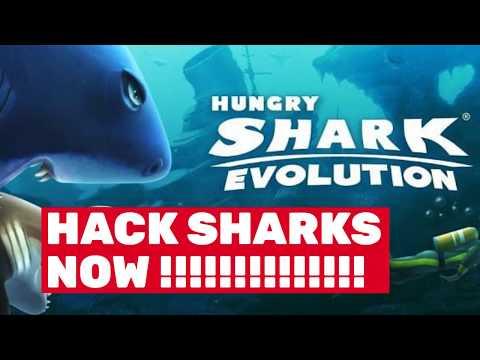hack hungry shark evolution windows phone - Hungry Shark Evolution Hack - Super Cheat For Coins and Gems!!!