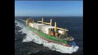 AAL - LIVE ACTION FOOTAGE OF MULTIPURPOSE PROJECT CARGO