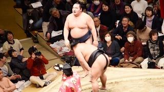 2017.02.05日本大相撲トーナメント第四十一回大会①⑤鶴竜VS松鳳山(二回戦...