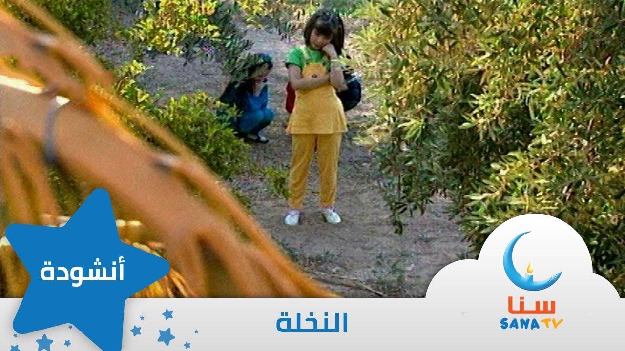 النخلة إيقاع من ألبوم طائر النورس قناة سنا Sana Tv Youtube