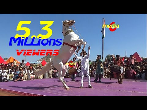 Horse Dance Competition at Pushkar Cattele Fair 2017(Full Video)