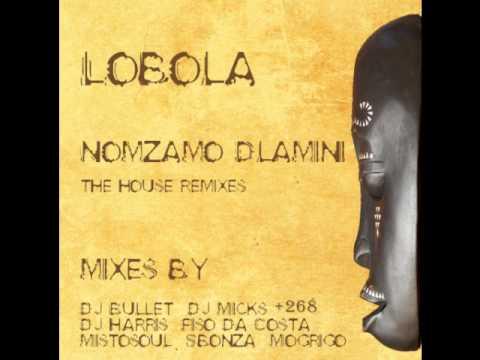 Nomzamo Dlamini - Lobola (DJ Micks Remix)
