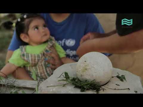 Documental online La ruta de las especias / Hierbas medicinales