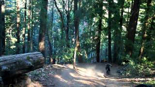 San Jose Mountain Biking - Soquel Demonstration Forest