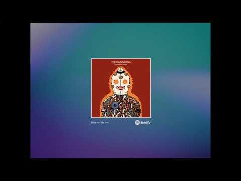 tortuganónima - El Hombre Pánico (Austin TV cover)