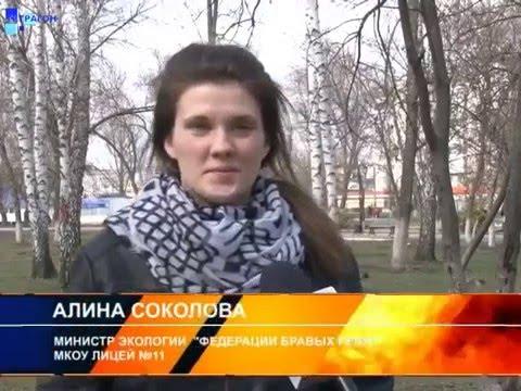 """Домики для птиц установили россошанские школьники в парке """"Юбилейный""""."""