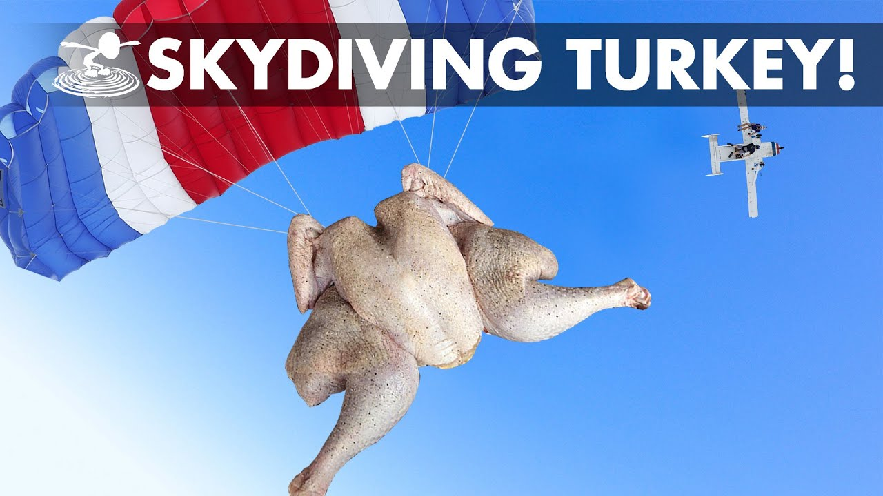 Dropping a Skydiving Thanksgiving Turkey from an RC Plane