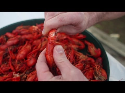 How To Eat A Crawfish