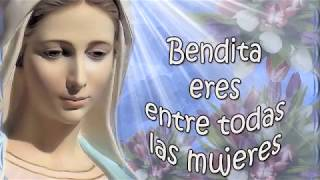CANCIONES A LA VIRGEN MARIA VOL 2