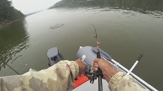 Кто живет в коряжнике? Полная адреналина рыбалка на спиннинг!   Рыбалка с Fishingsib
