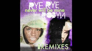 Rye Rye - Never Will Be Mine (Fedde Le Grand Dub Remix) [feat. Robyn]