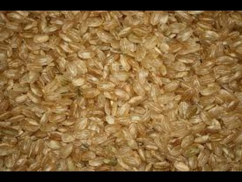 short grain brown rice | How to Make Recipes | Easy To Learn