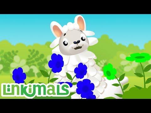 Linkimals™ - Learning Colors Songs! Kids Songs | Cartoons For Kids | Nursery Rhymes | Kids Learning