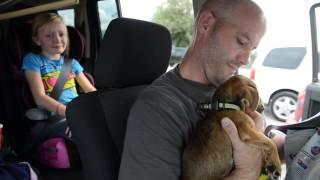 New Puppy Part 2