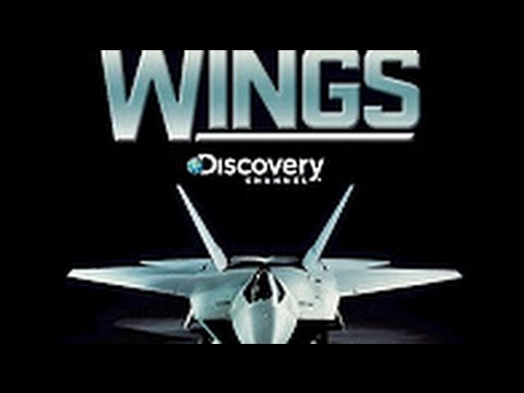 WINGS OVER THE