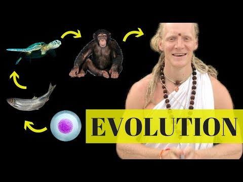 Is Evolution a Fact? The Spiritual Science of Becoming SUPER HUMAN!