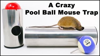 A Crazy Pool Ball Metal Pipe Mouse Trap Invented by a Youtube Viewer. Mousetrap Monday.
