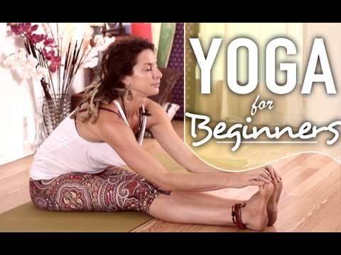 Yoga For Beginners – Gentle Full Body Stretches For Flexibility & …