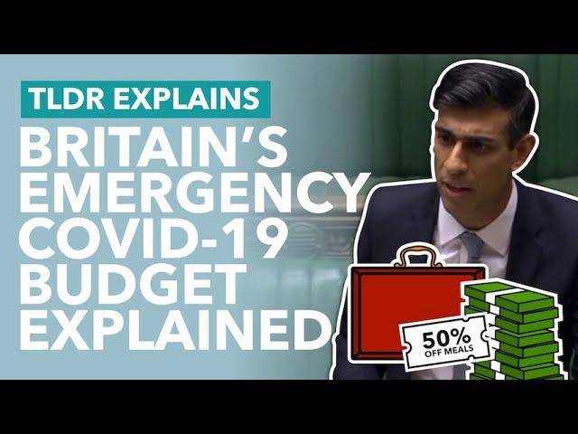The Emergency Coronavirus Budget Explained: Sunak's Summer Statement - TLDR News