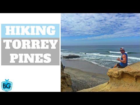 HIKING TORREY PINES IN SAN DIEGO