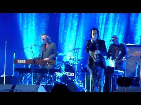 Nick Cave and the Bad Seeds - Jubilee Street - EXIT 2013