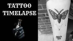 MOTH TATTOO/ TATTOO TIMELAPSE