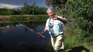 02b13c7aae171 Weekly fishing tips with Roland Martin - Wade Fishing ...