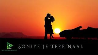 Sonie Je Tere Naal || Vishal Srivastav ||