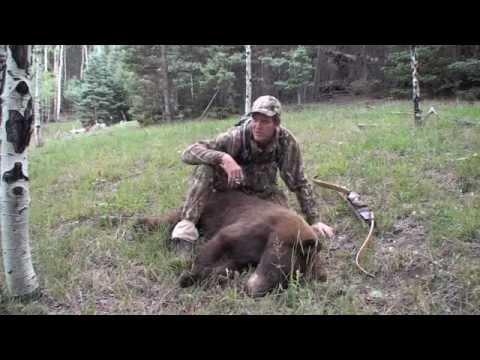 BowHunting Bears,Colorado Bear Hunt.