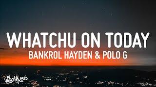 Best Alternative to Bankrol Hayden - Whatchu On Today
