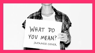 Justin Bieber - What Do You Mean?【Japanese Cover】