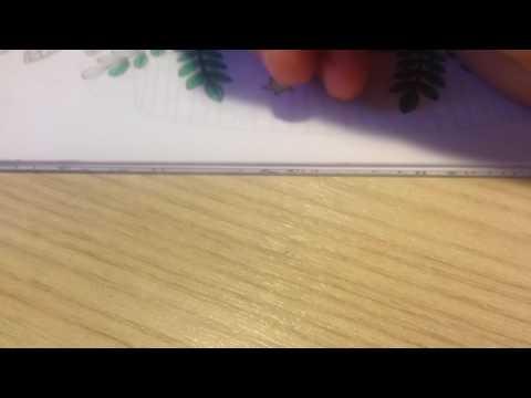 Сказочный лес рисунок 1 часть 4
