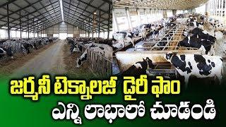 Germany Technology Dairy Farm || Modern Cow Dairy || High Tech Dairy Farming || SumanTV Rythu