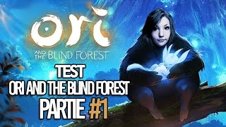 Test Sur Ori and the Blind Forest